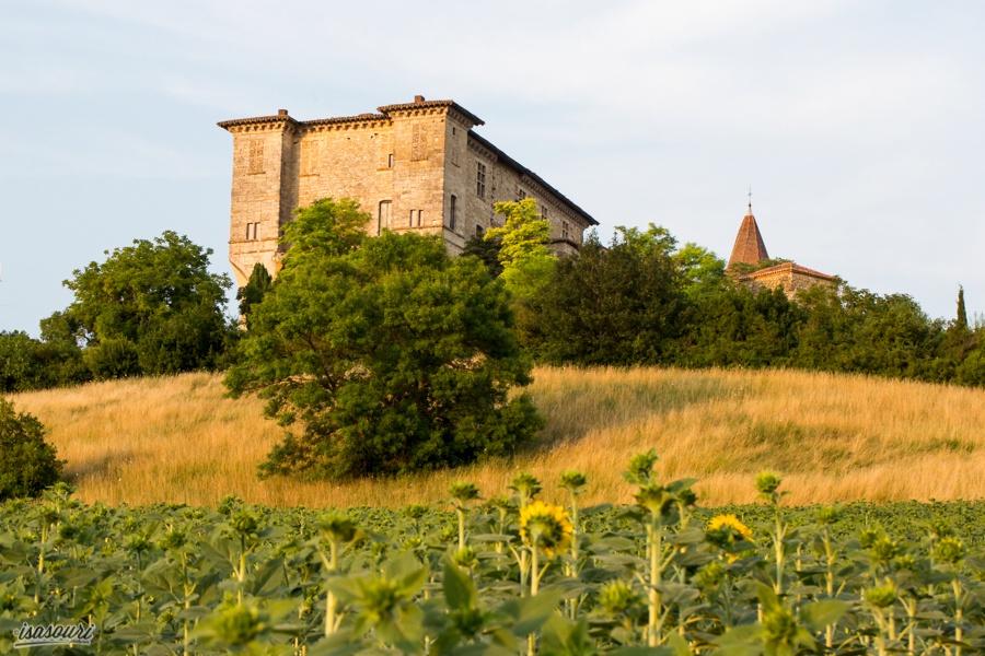 Château de Lavardens et champ de tournesols