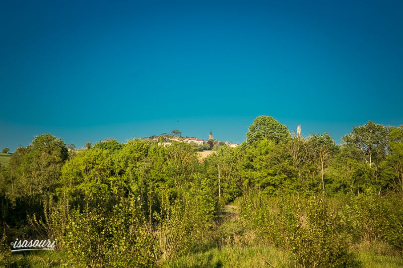 paysage vue Castillon-Massas