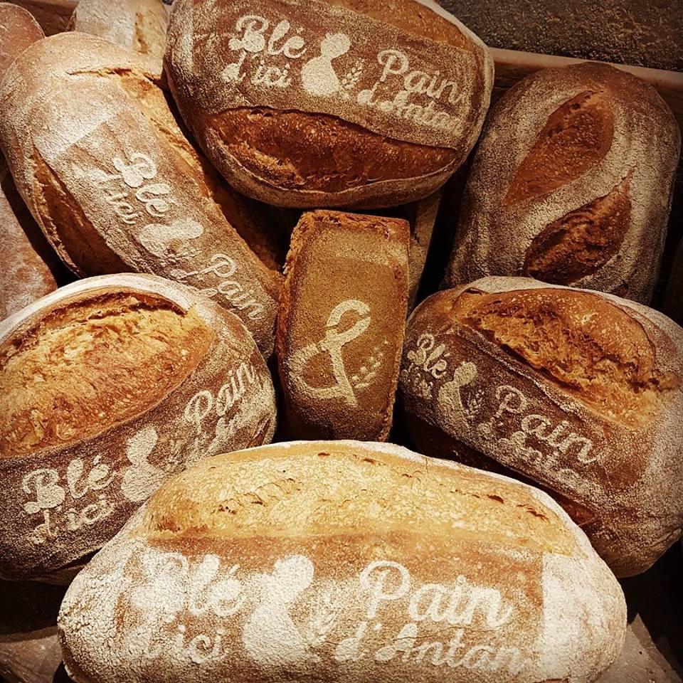 Trigo de aquí y Pan de antaño
