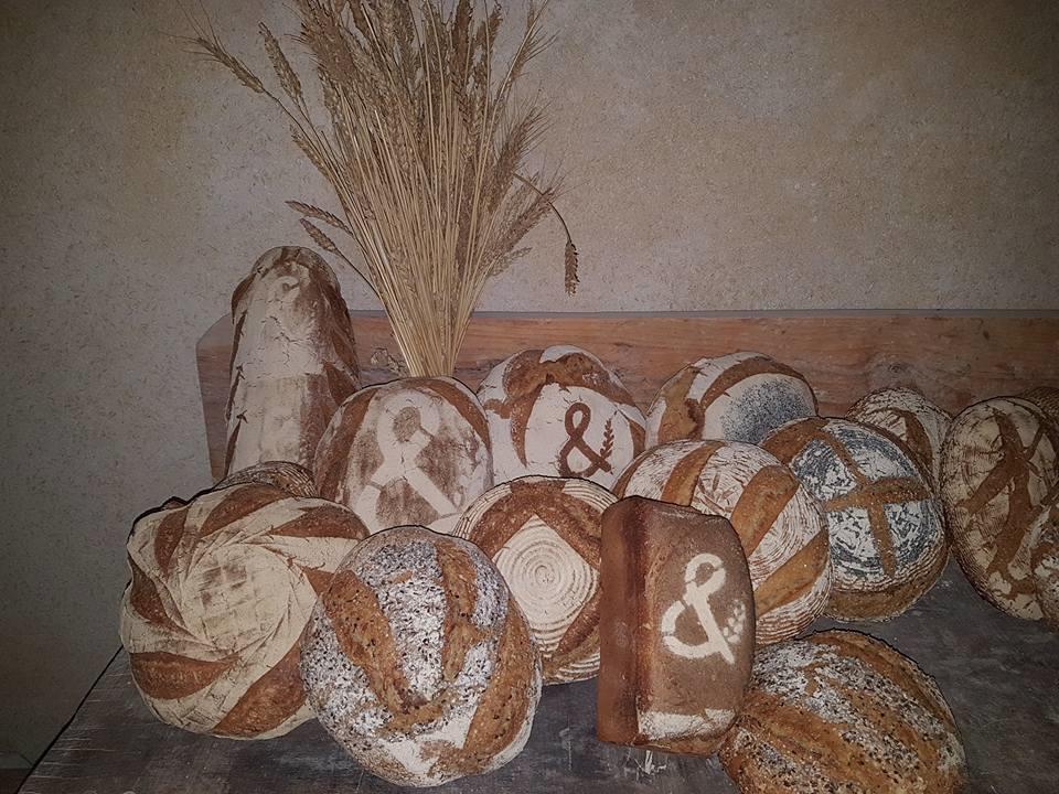 Pains de Blé d'ici & pain d'antan