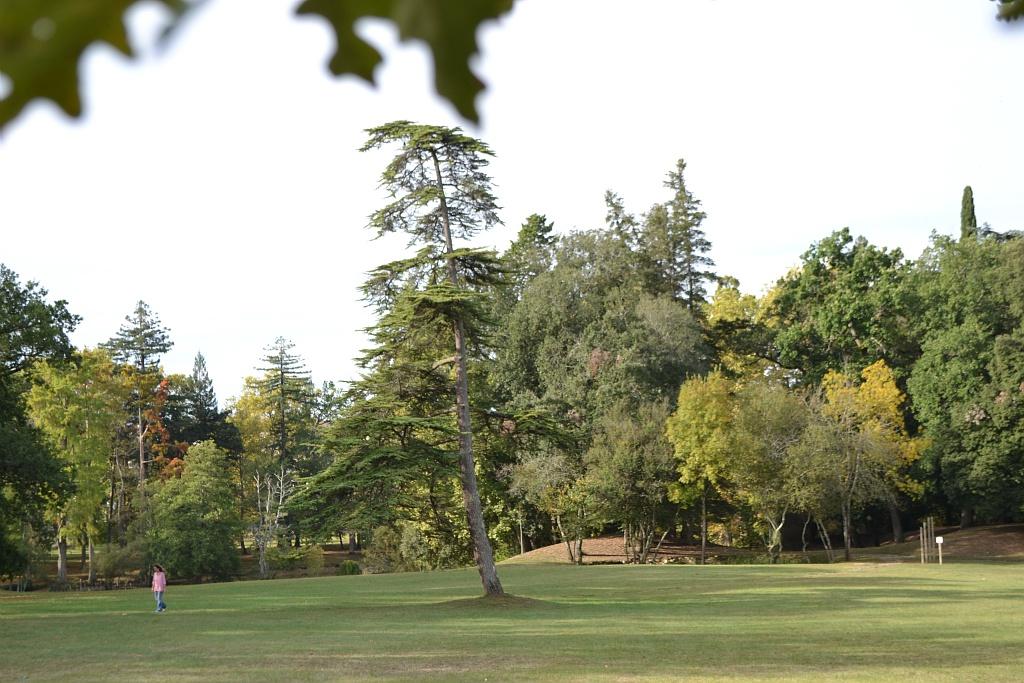 parc du département