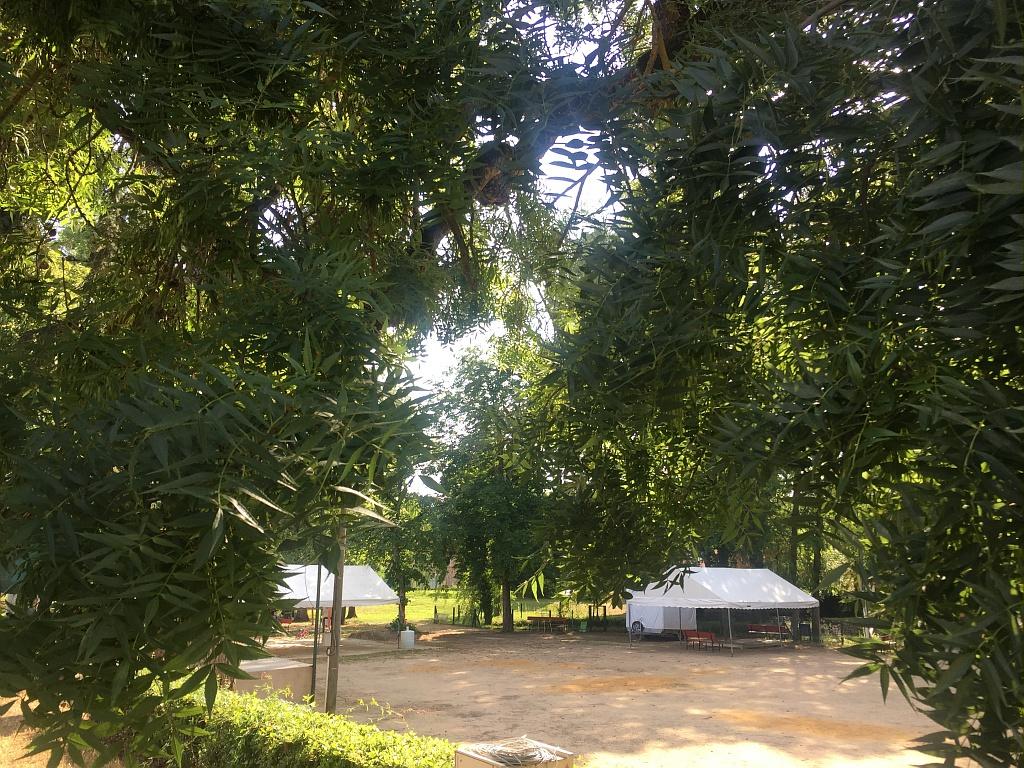 Parc Lannelongue