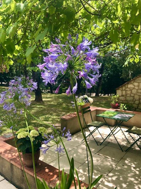 La Vigne et le Lierre – Chambre Aramis terrasse